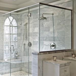 shower curtain vs glass door