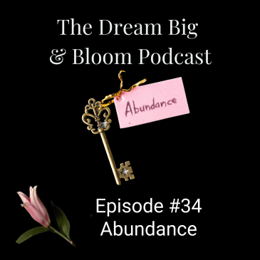 cover image of the key to abundance