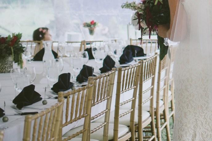 wedding packages. michigan wedding planner, wedding planner, Full service wedding planning, backyard wedding, Saugatuck wedding planner