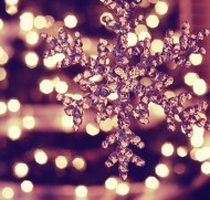 8af31-xmaslightsviahome-for-the-holidays-tumblr