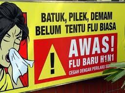 Flu Burung; Gejala, Cara penularan, Pencegahan dan Pengobatannya ...