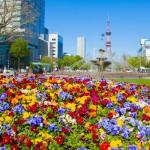 花フェスタ札幌2019 初夏を彩るフラワーフェス開催日程