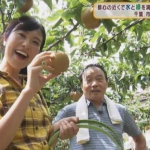 NHK千葉 伊藤優アナが可愛い!気になるカップ・身長・画像は?