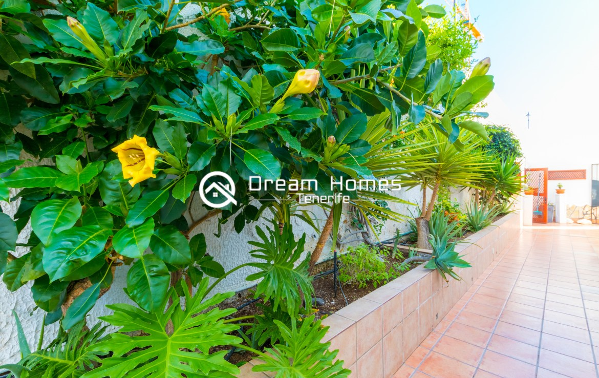 Fantastic Oceanview Penthouse For Rent in Los Gigantes Green Area Real Estate Dream Homes Tenerife