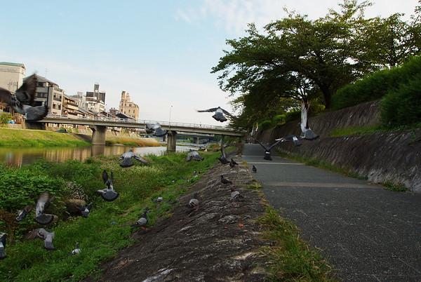 Kyoto day 3-30.jpg