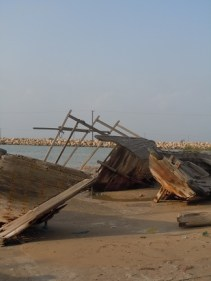 Dhows 8
