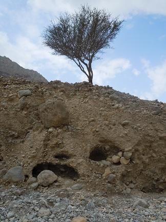 Wadi Al-Baih 13