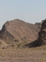 Wadi Kub 7