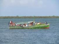 Dhows 12