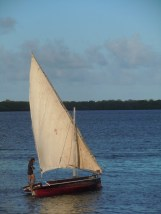 Dhows 13