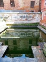 Ponds 5