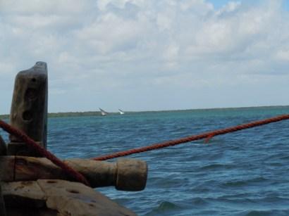 Sailing 7