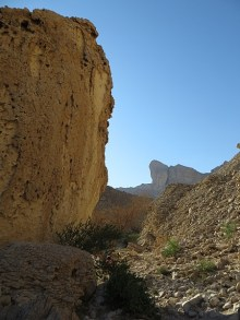 Wadi Al Nayhan 7