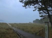 coastal-walk-4