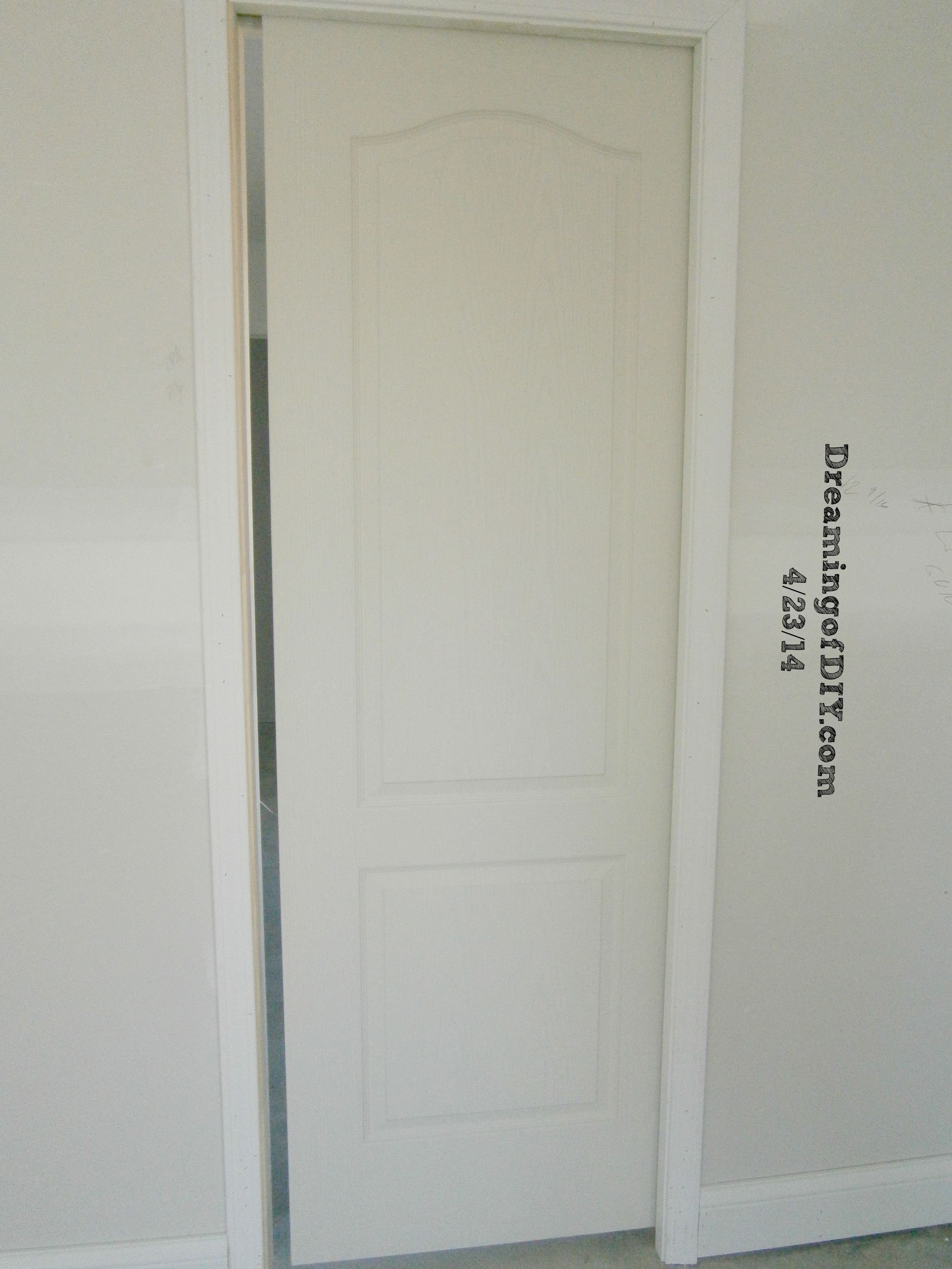 Pocket Door in Master