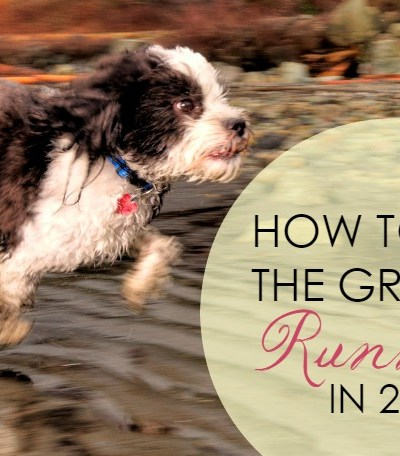 How to Hit the Ground Running in 2015