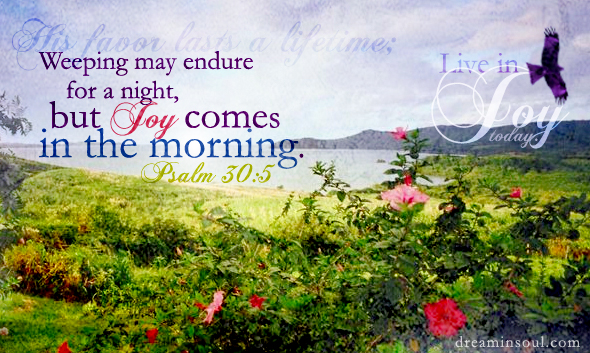 Image result for joy comes in the morning