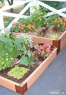 Raised Bed With Square Foot Gardening