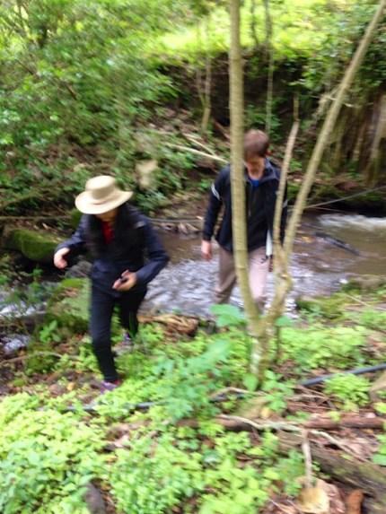 creek-adventure 9