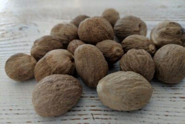 Nutmeg seeds (Myristica fragrans)