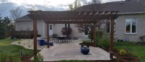 Backyard Landscape Update – Acton