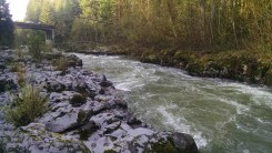 Rouge River 1