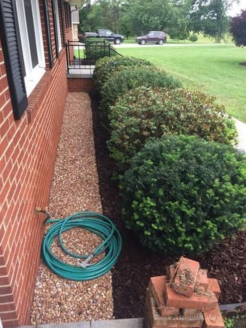 50 Trend Front Yard And Backyard Landscaping Ideas On A Budget BackyardLandscaping 17