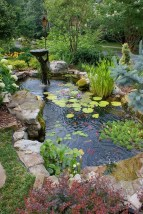 53 cheap landscaping updates that make a splash 16