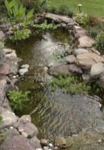 53 cheap landscaping updates that make a splash 33