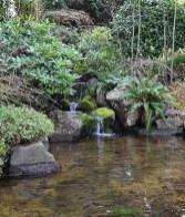 53 cheap landscaping updates that make a splash 39