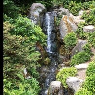53 cheap landscaping updates that make a splash 46