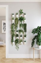 64 beautiful hanging plants ideas for home #beautiful #hanging #plants #ideas for #home 14