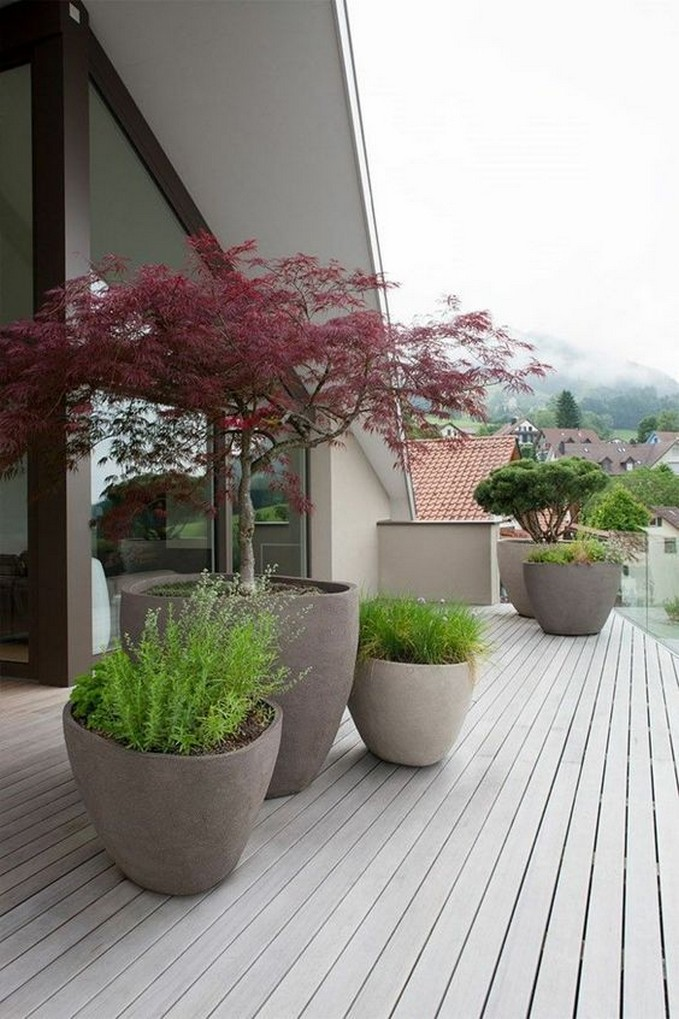 10 Indoor Plant Care Tips Home Decor 3