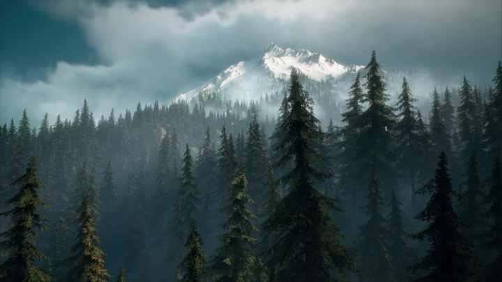Days Gone paysage