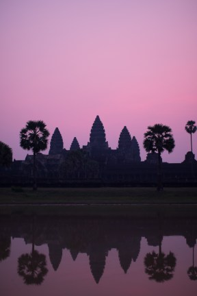 Angkor Pink Sunrise Portrait