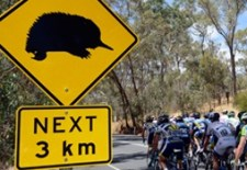 Fantasy Cycling – Tour Down Under