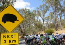 Fantasy Cycling for TDU – Plan Your Race