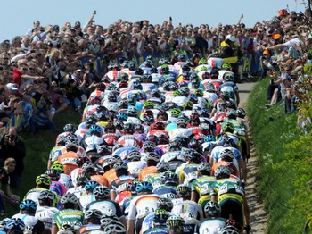 Amstel Gold small