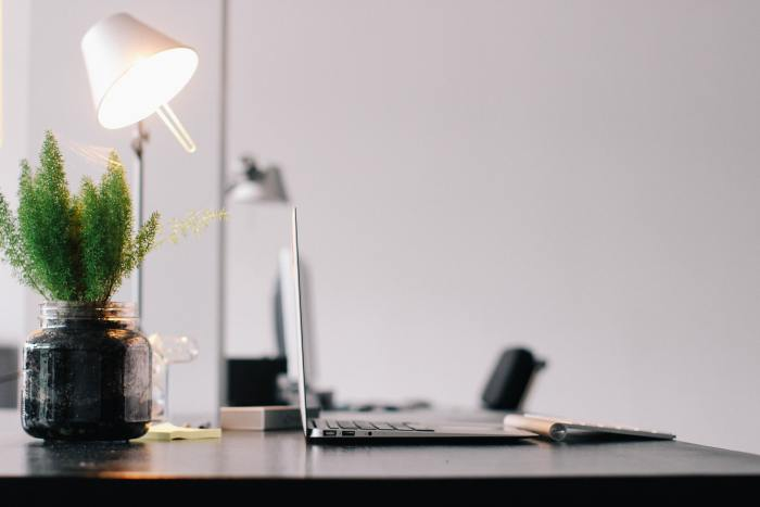 laptop on a desk with a plant and a lamp