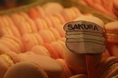 Macaron Sakura yang cantik