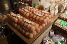 Telur organik