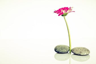 balance and health