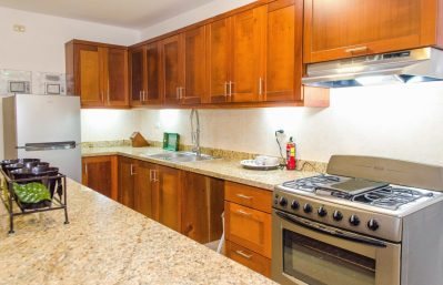 Home 1 lower apartment kitchen