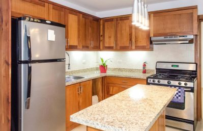 Home 2 - lower apt kitchen