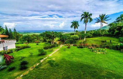 Home 2 - view - gardens