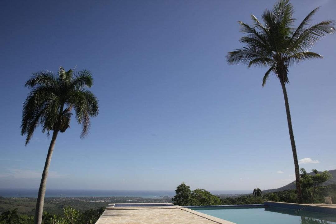 pool_and_palms_dve