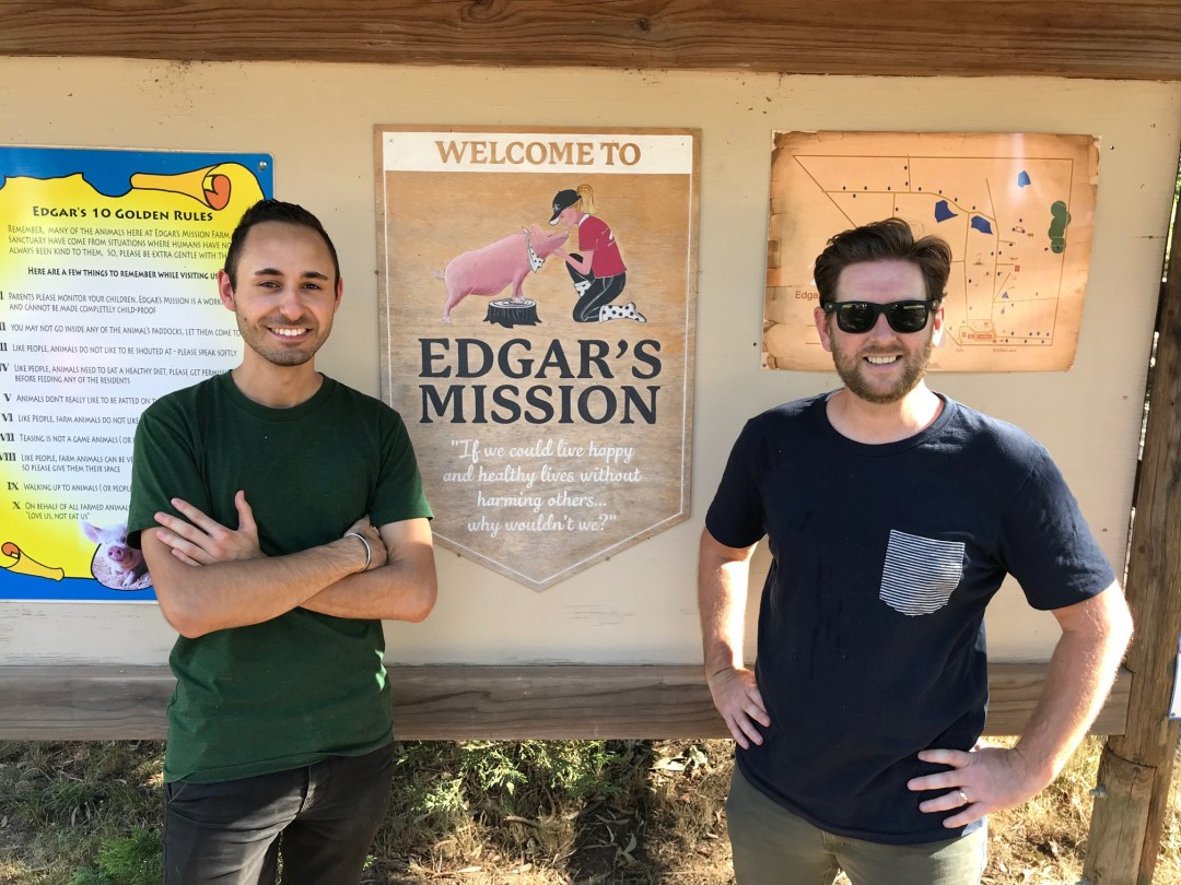 DreamWalk Supports Edgar's Mission – Rescued Animal Sanctuary