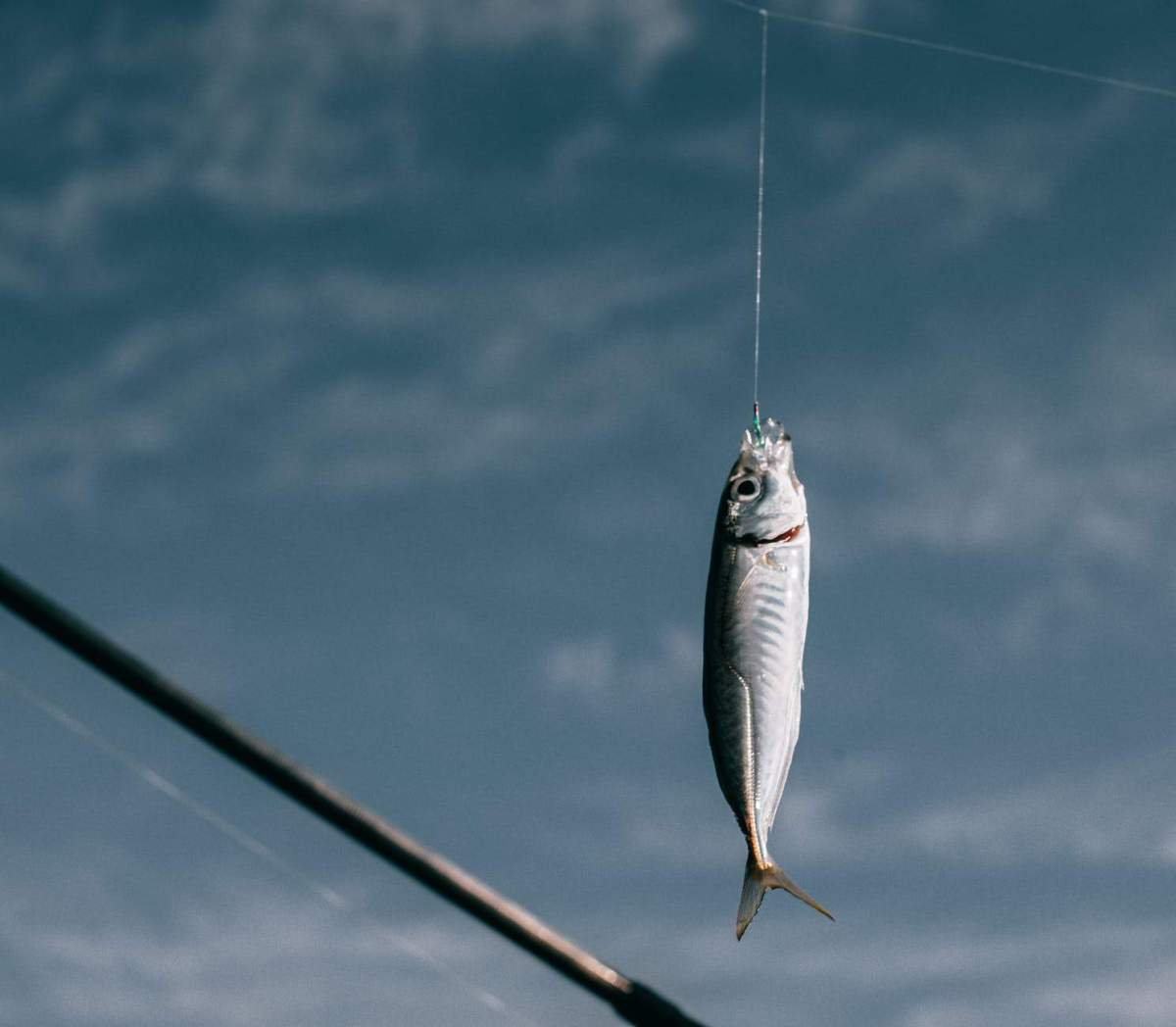 fish on the hook - representing people's responsibilities and why they're not rich