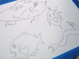 illustration, fish