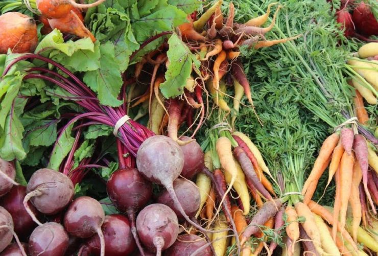 Companion Planting: Vegetables You Should Grow Together